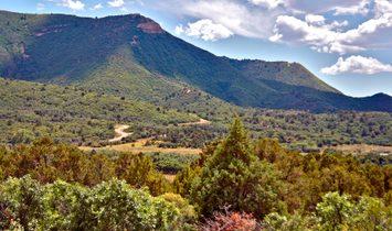Menefee Mountain Ranch
