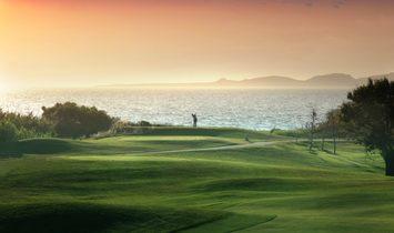 Golf Front Ii