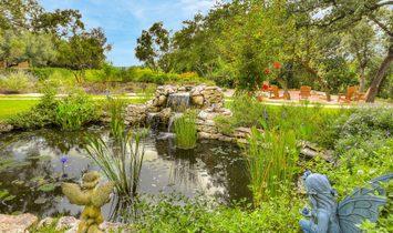 The Crown Jewel Of Barton Creek