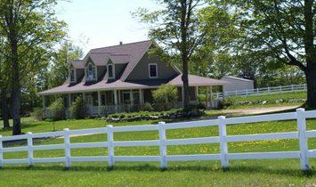 Northern Michigan Equestrian Haven