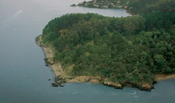 The Bluff Point Estate Site