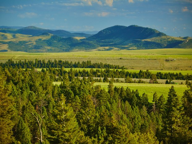 Farm Ranch in Townsend, Montana, United States 1