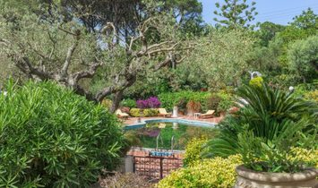 Elegant Villa With Pool In Anacapri