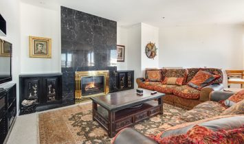Spectacular Condo With Guest Suite