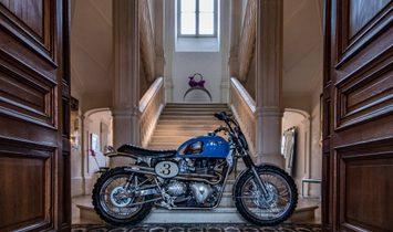 """Triumph  """"Blue Legend""""  ISDT Style"""