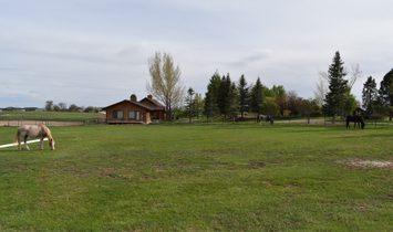 Flying Buffalo Ranch