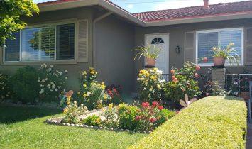 House in Santa Clara, California, United States 1