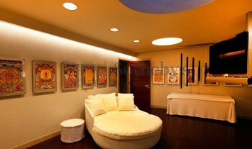 Wide House Decorated With Artistic Standards
