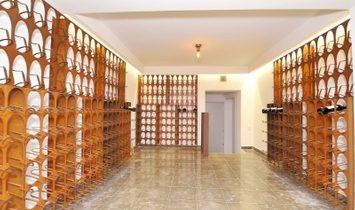 PF17165, Villa T6+1, OEIRAS