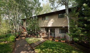 House in Aspen, Colorado, United States of America