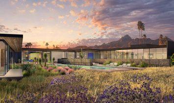 Modern Desert Contemporary