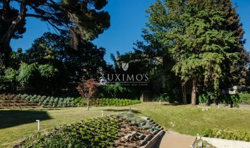 New apartment and modern with a garden, Porto, Portugal