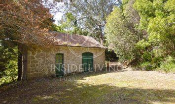 Farm 9 Bedrooms For sale Sintra