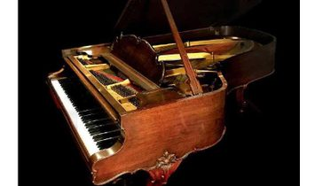 Complete Collection of Mechanical Musical Instruments