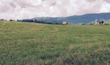 Farm/Ranch/Plantation