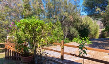 Single house for sale in Marciana