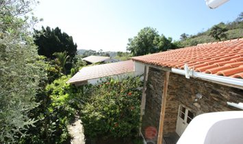 Country Estate T9 for sell in Beja