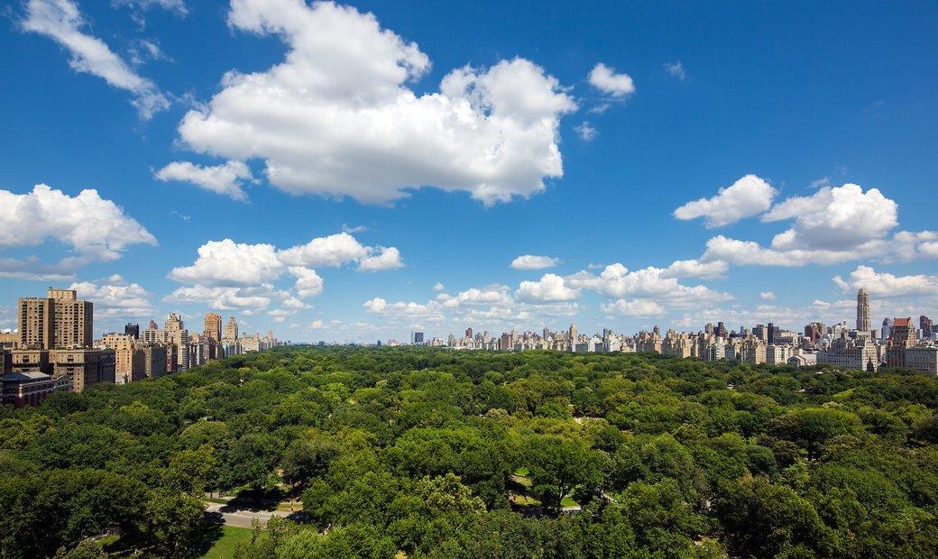 Central Park Views/Terrace