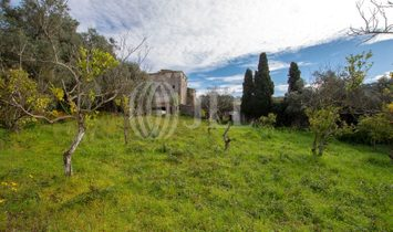 Property with 10 bedroom-villa and other constructions in Barcarena, Queluz