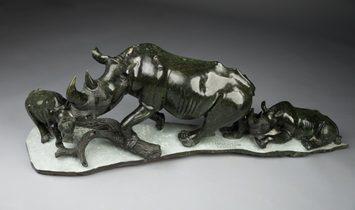 The Rhinoceros Family