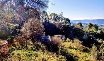Bigues villa