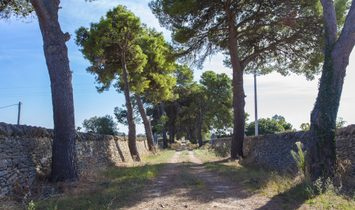 Sale - Villa Avetrana