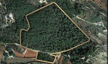 San Rafel De La Creu land