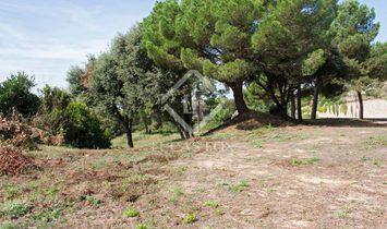 Sant Andreu de Llavaneres Plot