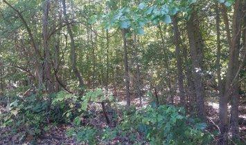 Lots/Land/Farm - ANNAPOLIS, MD