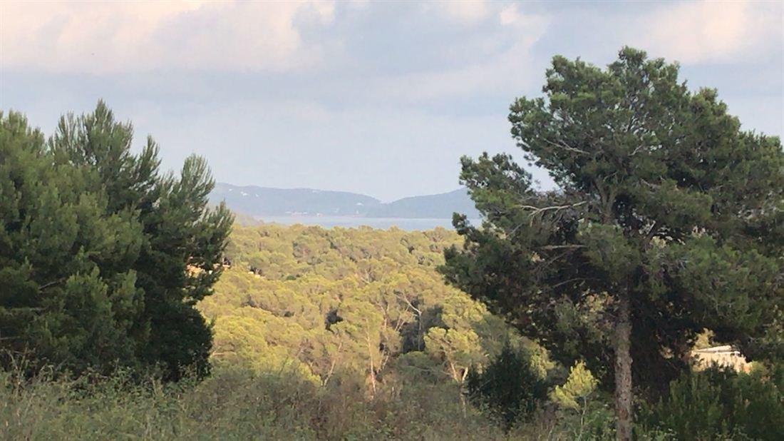 Land in Ibiza, Balearic Islands, Spain 1