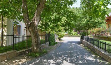 Peaceful Living in Lush Greenery