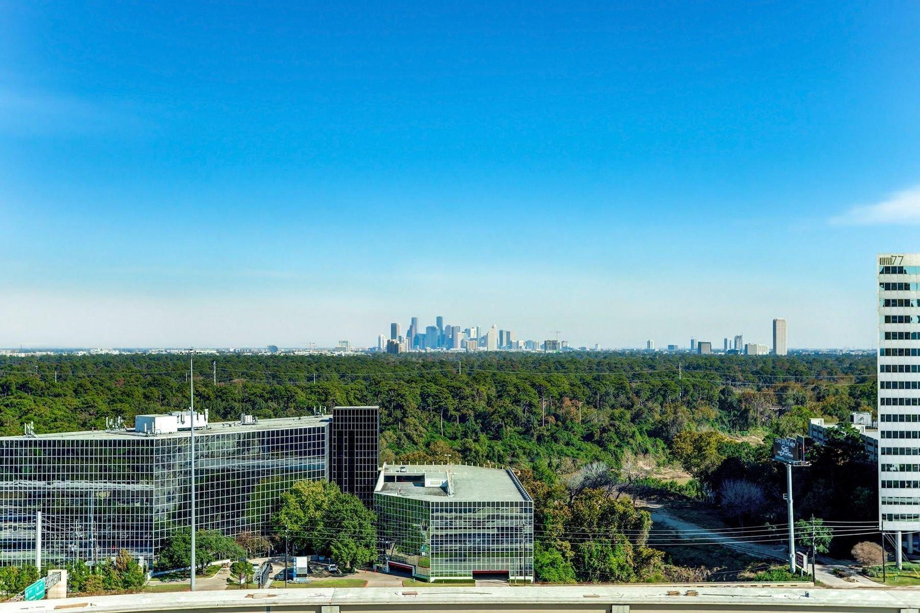 Apartment in Houston, Texas, United States 1 - 10739704