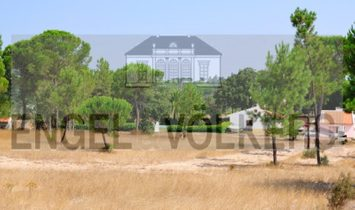 Farm to renovate in Melides
