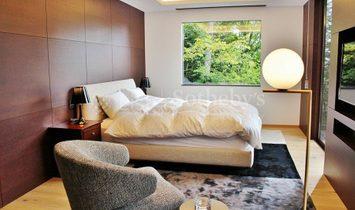 Verdor Brand New Residence In Hanareyama, Karuizawa