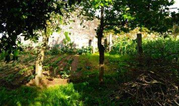 Country Home  For sale Vila Nova de Gaia
