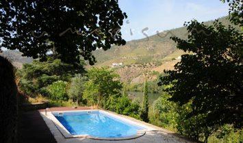 Sao Joao da Pesqueira farm