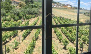 Peso da Regua farm