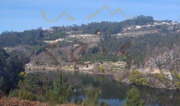Marco de Canaveses farm
