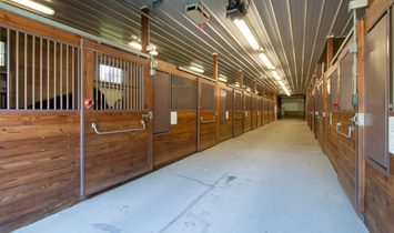 Unparalleled  Equestrian Facilities