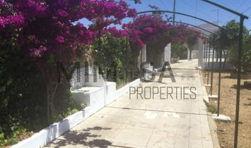 Fabulous farmhouse in Sagres, with extensive grounds