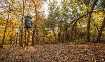 Stillhouse Hollow Sanctuary
