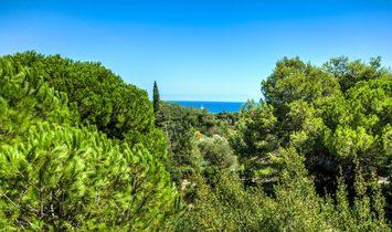 Cabrera de Mar, Agell