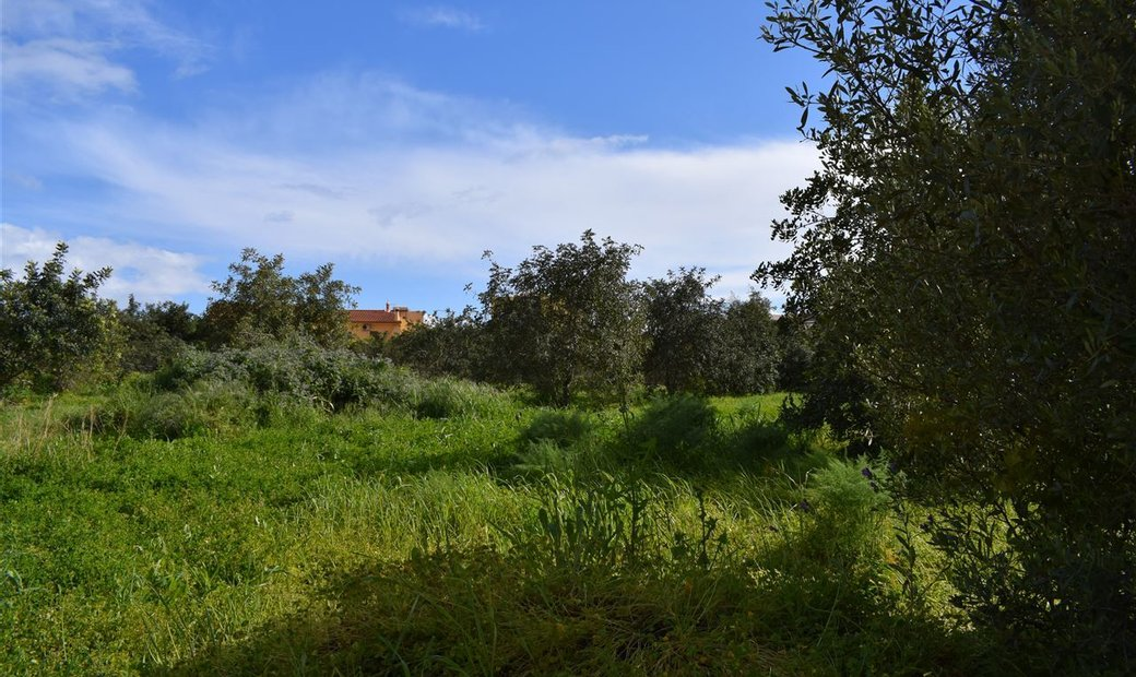 Piece of Real Estate  Sell em Albufeira e Olhos de Água,Albufeira