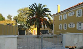 Great House in Alvalade Stadium with more than 1400 m2 (building and grounds) for services or housin