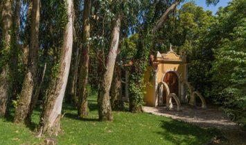 Fifth in São Pedro de Sintra