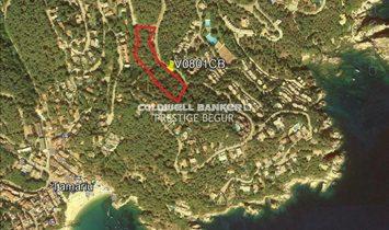 Tamariu Plot