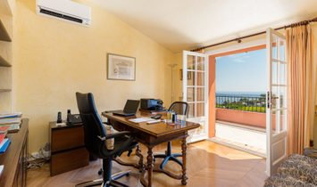 Sale - Property Cannes (Super Cannes)