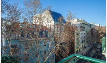 Fabulous Apartment, undergoing remodeling, T3 duplex or T4 duplex-AVENUES NOVAS