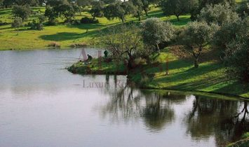 Homestead in Alcochete near the Tagus estuary nature reserve