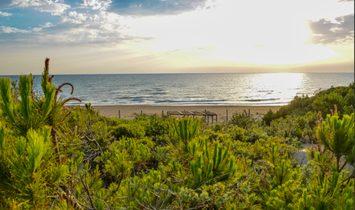 Luxury Villa Dorata near the beach
